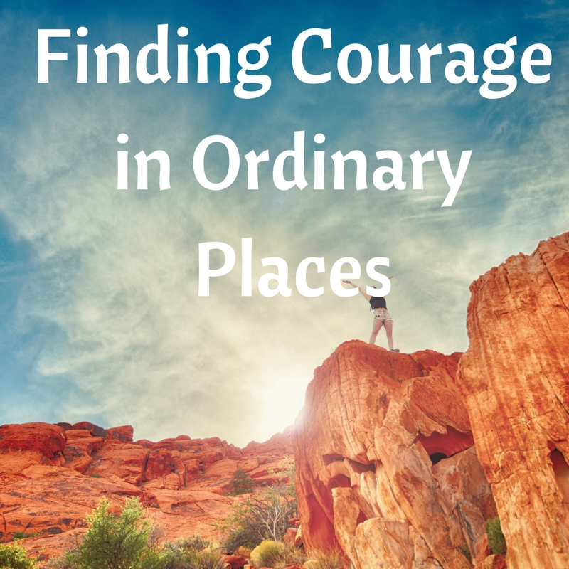 ordinary courage Ordinary courage: the revolutionary war adventures of joseph plumb martin, 4th edition.
